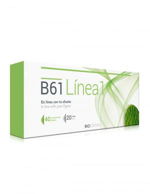 B61 Línea 1